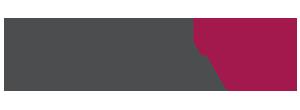 dimex logo