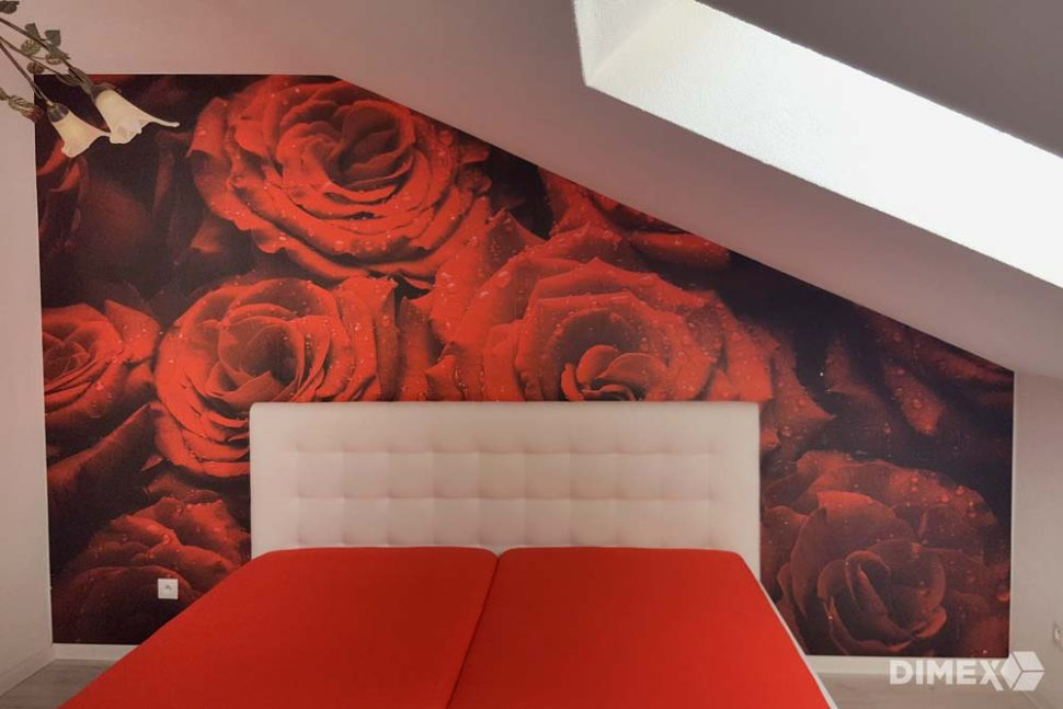 Fototapeta červené ruže referencia dimex